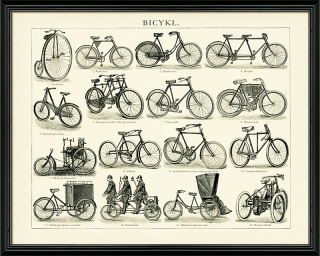 Bicykly